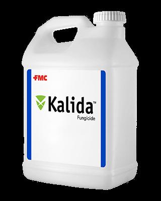 Kalida_Jug_Mockup-1